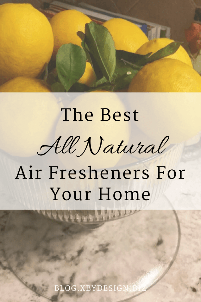 Stinky House?  Try A Natural Air Freshener For Your Home