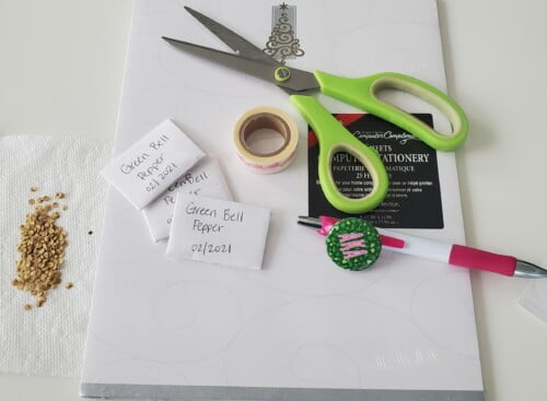 How to make seed envelopes for free